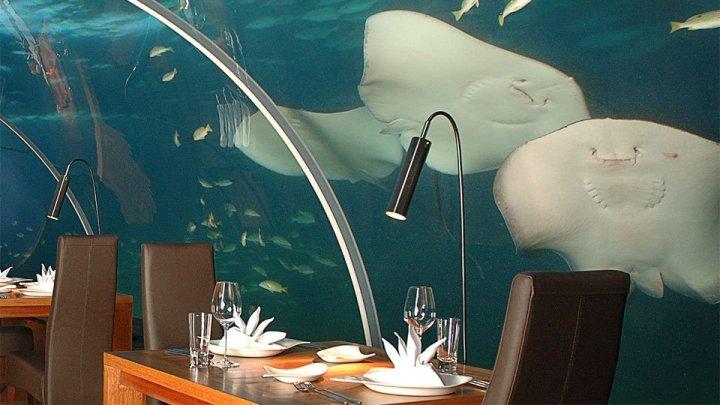ithaa-undersea-restuarant